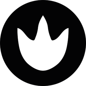 logo palmipède